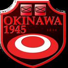 Battle of Okinawa 1945 (free)