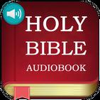 ☑ Best Audio Bible App