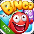 Bingo - Pro Bingo Crush™
