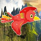 Ethiopian Fly Bird