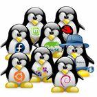 Курс Linux APK