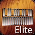 Professional Xylophone Elite