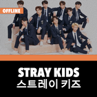 Stray Kids Offline - KPop
