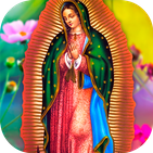 Virgen De Guadalupe ❤️ (Oración Con Videos ▶️)